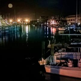 Marina Cape May, New Jersey  by Doreen Rutherford - Transportation Boats
