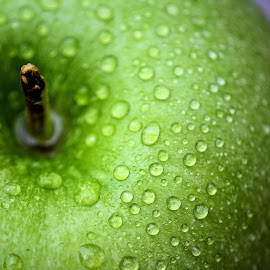 Green apple by Heather Aplin - Food & Drink Fruits & Vegetables ( crunch, fruit, fresh, crisp, apple, green, drops, healthy, crunchy, wet, crispy,  )