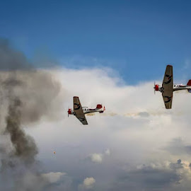 Rolling In by Theo Wolmarans - Transportation Airplanes ( harvard, texan, t6, airshow, formation,  )