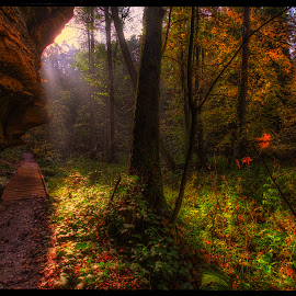 autumn in Peklo (Hell) 2 by Petr Klingr - Landscapes Forests ( hdr     peklo     national natural monument     autumn     leaves )