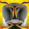 2014-03-14-11.37.01 ZS PMax_XBG.jpg