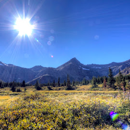 The Meadow by Andy Schwanke - Landscapes Mountains & Hills ( mountains, sunny, landscape, sun, glacier national park )