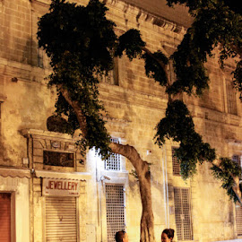 One night in Malta by Ilse-Belle Heyneman - People Couples ( love, park, malta, couple, night,  )