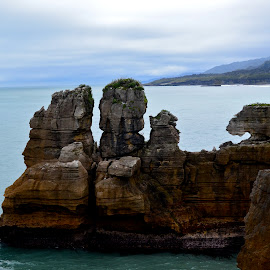 Nature's Divingboard by Alex Fylypovych - Landscapes Caves & Formations ( water, rocky, formations, ocean, travel, landscape, rocks, new zealand, hiking )