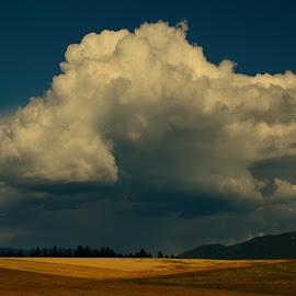 It's A Brewing by Jennifer Parmelee - Landscapes Cloud Formations ( clouds, farmland, places, storms, landscapes,  )