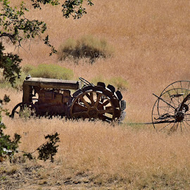 Antique tractor  by Tom Lynch - Artistic Objects Antiques ( old, farm equipment, landscape, antique, tractor )