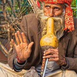 Snake-Charmer and Cobra by Richard Duerksen - People Musicians & Entertainers ( snake, mumbai, temples, snake-charmer, flute, musician, ruins, cobra )