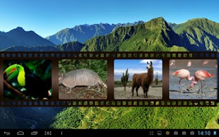 Screenshot of Best South American Animals