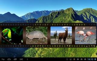 Screenshot of Best South American Animals