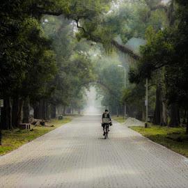 The Botanical garden by Manindra Mukherjee - City,  Street & Park  City Parks ( parks, street, people, street photography, city )