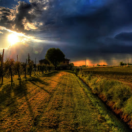 Behind the coutry house by Rino Calori - Landscapes Sunsets & Sunrises ( hdr, country house, sunset, emilia romagna, italy )