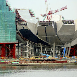 The building of the ArtScience Museum in Marina Bay in 2010. by Leong Jeam Wong - Buildings & Architecture Office Buildings & Hotels ( sands, lotus, scaffolding, art, mbs, crane, museum, construction, marina bay, science )