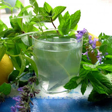 Lemon Verbena and Mint Tea - French Verveine and Mint Tisane