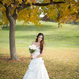 Young bride beneath tree by Devin Donnelly - Wedding Bride ( autumn, wedding, autumn colors, bride, young lady )