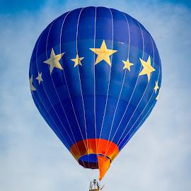 by Bob Gorman - Transportation Other ( hot air balloon, quad city balloon festival, festival, transportation, balloon )