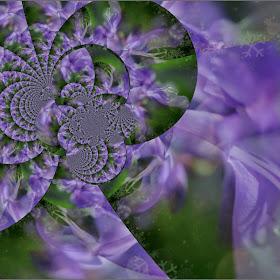 lilac craft.jpg
