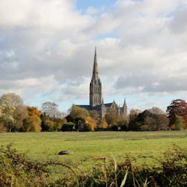 SALISBURY CATHEDERAL by Charlie Brown - Novices Only Landscapes