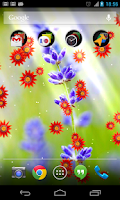 Screenshot of Flower photo Live Wallpaper