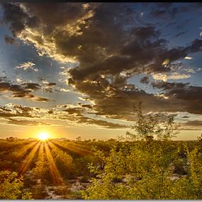 Arizona Sunset by Stephan Guenot - Landscapes Sunsets & Sunrises ( sunset, arizona, tucson )