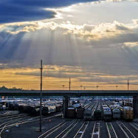 Sunburst Over The Yards by Kevin Anderson - Transportation Trains ( rolling stock, sunburst, bnsf, kansas city, switchyard, transportation, kansas, trains )