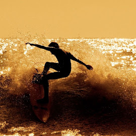 Endless Summer by Rosie English - Novices Only Sports