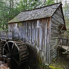 Cades Cove Grist Mill by Chuck Hagan - Buildings & Architecture Decaying & Abandoned (  )