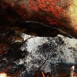 mirror by Tihomir Lugaric - Nature Up Close Water