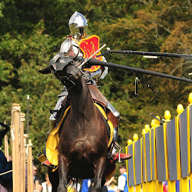 jousting by Marcus Franklin - News & Events Entertainment ( jousting, horse, knight )