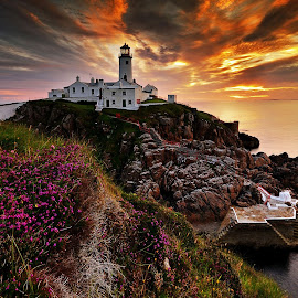 Sunrise At Fanad by Leslie Hanthorne - Landscapes Sunsets & Sunrises ( lighthouse, sunrise, donegal fanad, wild flowers )