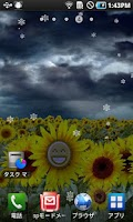 Screenshot of Sunflower LW + weather