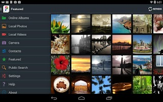 Screenshot of PicsPro for Picasa, Google+