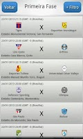 Screenshot of Libertadores 2013