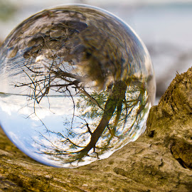 the world in a ball by Linda Brueckmann - Artistic Objects Glass (  )