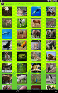Play & Learn: Animals Tablet - screenshot