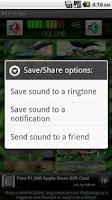 Screenshot of Bird Songs
