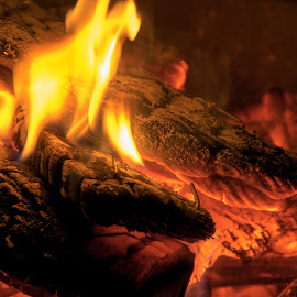 Woodburner by Craig Wood - Novices Only Macro