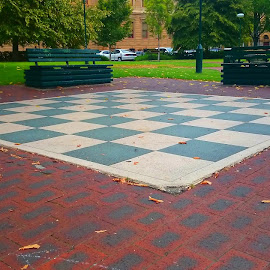 Check Mate by Greg Faull - City,  Street & Park  City Parks ( park, check, chess, mate, city )