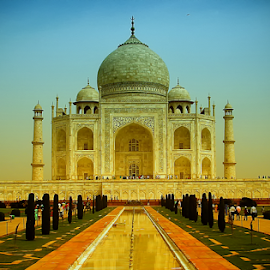 Taj Mahal by Ankur Khanna - Buildings & Architecture Statues & Monuments ( love, wonder of world, taj mahal, agra, beauty )