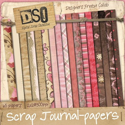 DSO-scrapjournal_papers