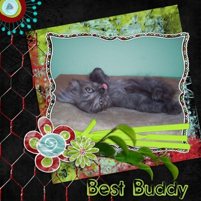 best buddy (600 x 600)