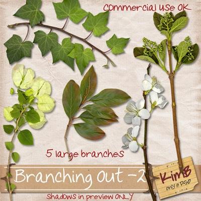 kb-branchingout2_preview