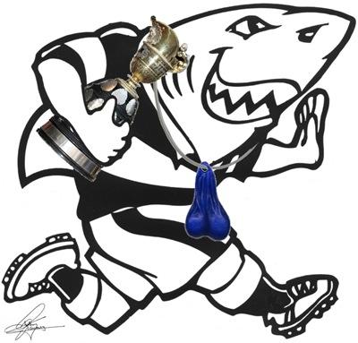 Natal-Sharks 2009 Logo
