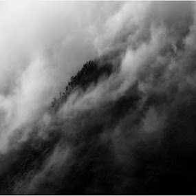 kabut turun menggulung di tepian by Ully Zoelkarnain - Landscapes Mountains & Hills