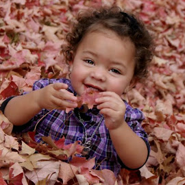 It's Fall! by Jessica Williams Bender - Babies & Children Children Candids ( child playing in leaves, fall leaves, baby in leaves, , fall, color, colorful, nature )