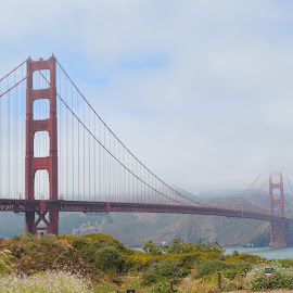 Amaze by Renu Jayasinghe - Buildings & Architecture Bridges & Suspended Structures ( golden gate bridge, sf,  )