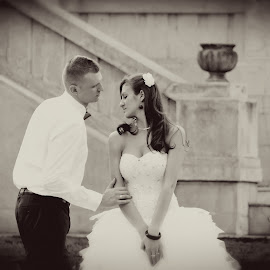 by Sasa Rajic Novi Sad - Wedding Bride & Groom