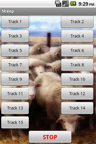 羊 - 場音效
