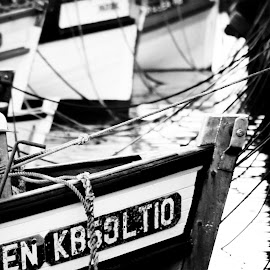 In the harbour by Werner Booysen - Transportation Boats ( blackandwhite, harbor, black and white, harbour, boats, fishing, fishing boat, werner booysen, western cape,  )