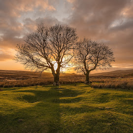 Sunset at Kippure by Greg Sinclair - Landscapes Sunsets & Sunrises (  )