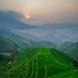 Longsheng Rice Terrace by Talha Akhtar - Landscapes Prairies, Meadows & Fields ( rice, green, sunrise, morning, fields )